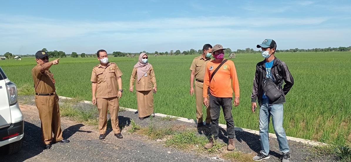 Peninjauan lokasi proyek pengembangan sistem irigasi Jalan Usaha Tani